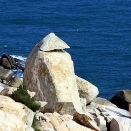 东门屿奇石